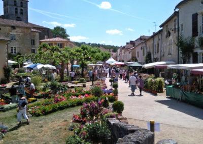 flower-festival-st-jean-de-cole-large